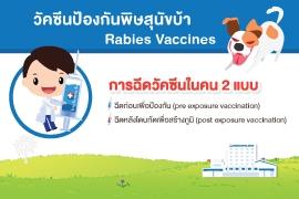 วัคซีนป้องกันพิษสุนัขบ้า